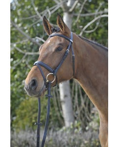Stubben Classic Waterford Flash Bridle 1001