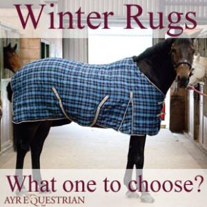 New Pessoa Winter Rugs – What Rug to Choose?
